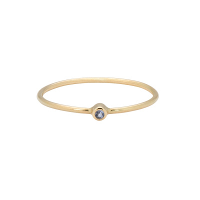 ANNA + NINA 14 Karaat Gouden Solid Gold Birthstone December Ring 19-3M908034G